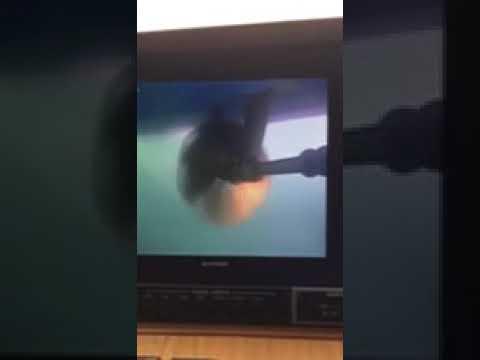 SV27 Underwater Camera