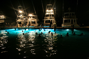 SV10 Underwater Lights